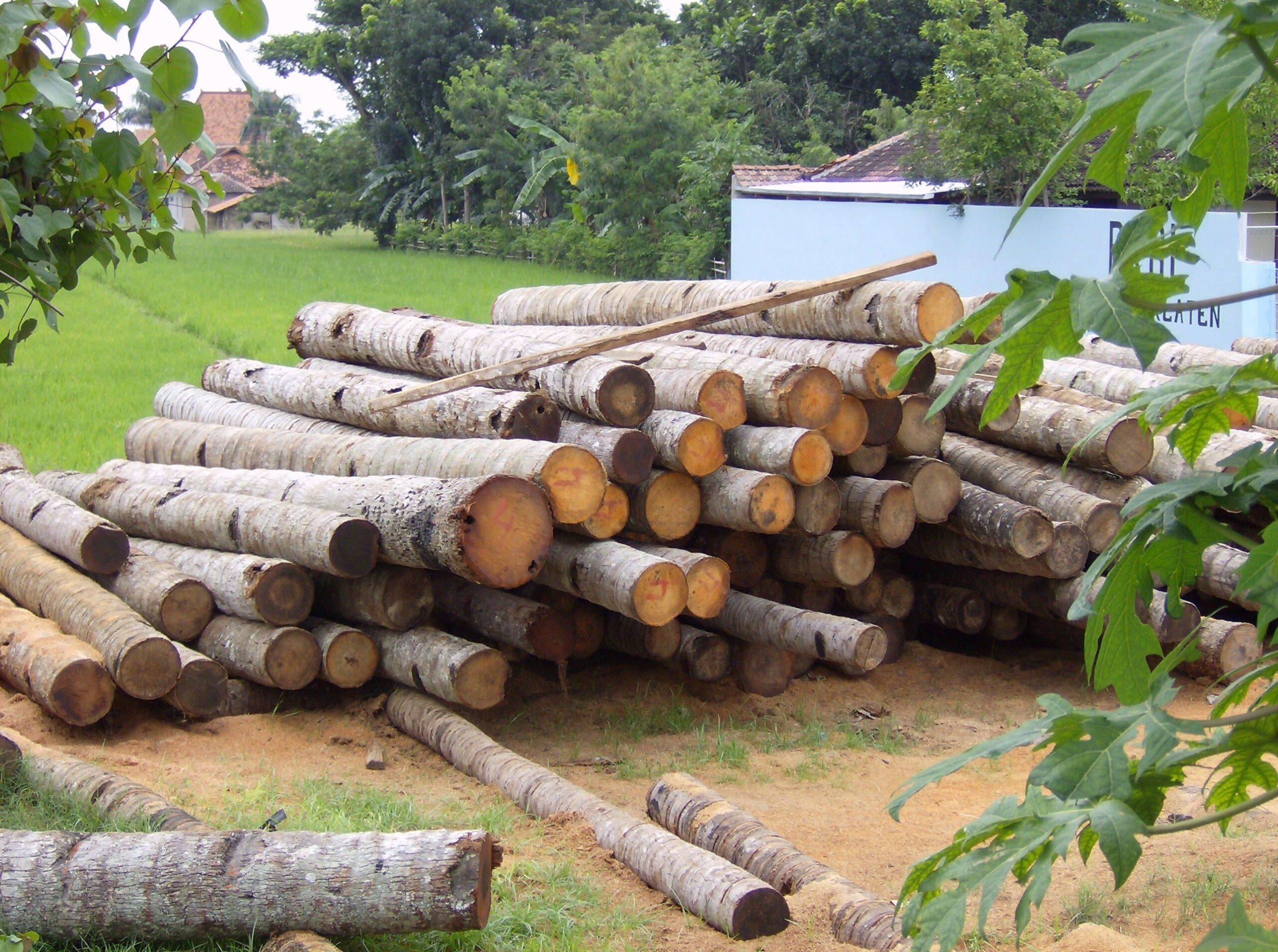 Materiales ecológicos