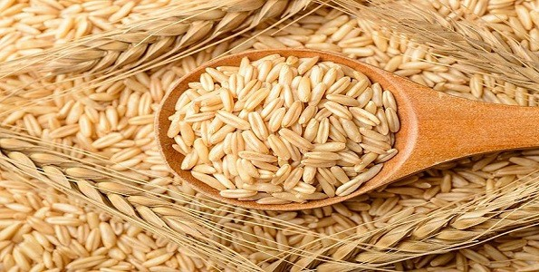 propiedades del arroz integral